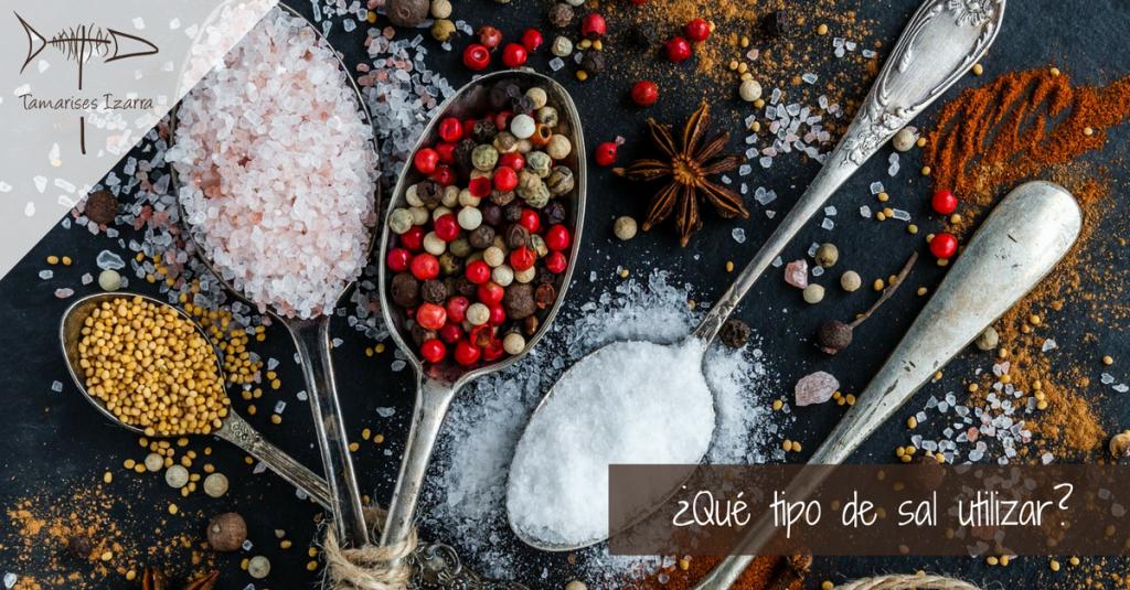 ¿Qué tipo de sal utilizar?