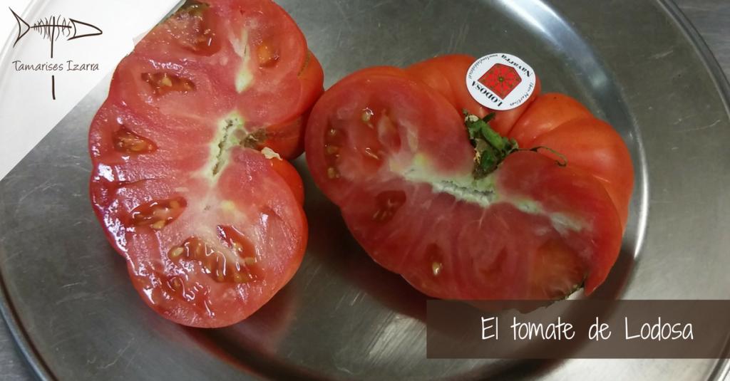 El tomate de Lodosa